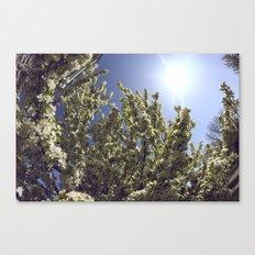 Green Breeze Canvas Print