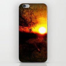 Crépuscule iPhone & iPod Skin
