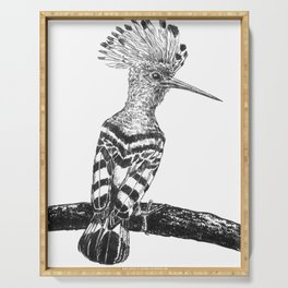 Hoopoe drawing Serving Tray
