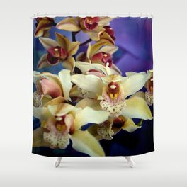 Just Like Angel Falls Shower Curtain
