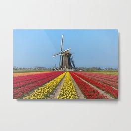 Windmill Oversizing Tulips Metal Print