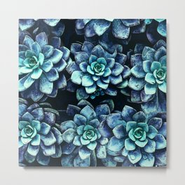 Blue And Green Succulent Plants Metal Print