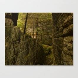Everything is Magic Canvas Print