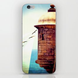 Balance Of Thought iPhone Skin