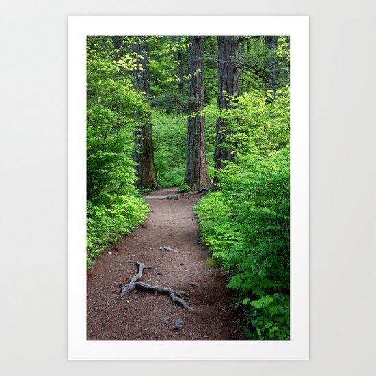 Oregon Trail Art Print
