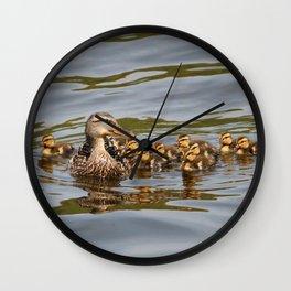Mallard duck and ducklings Wall Clock