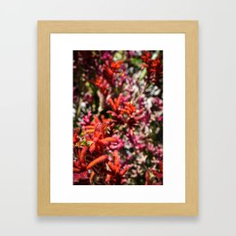 Flowers in Pink and Red Framed Art Print