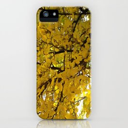 Liquid Amber Autumn Vibes Abstract iPhone Case