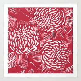 Waratahs Red Art Print