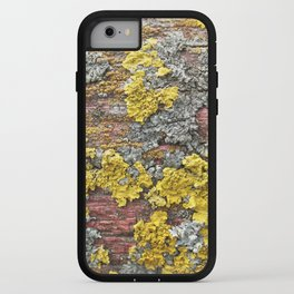 Colorful bark iPhone Case