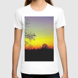 Metamora, Michigan Fall Sun T-shirt