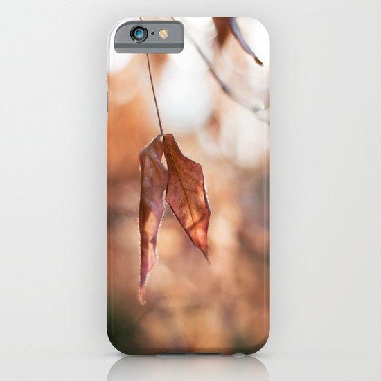 Late Autumn Light II iPhone & iPod Case