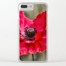Red Poppy with Bee Clear iPhone Case