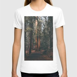 Walking Sequoia T-shirt