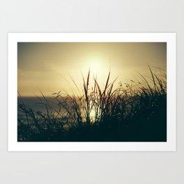 Newquay Sunset Art Print