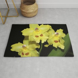Glorious Golden Orchid - Odontonia Yellow Parade Alpine Rug