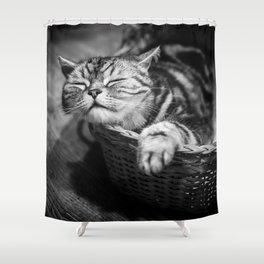 sleepy cat Shower Curtain