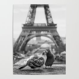 Love Birds (Black and White) Poster