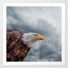 Bald Eagle Cloud Montage Art Print