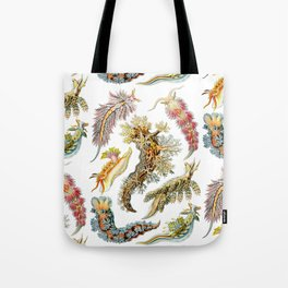 Ernst Haeckel - Nudibranchia (Snails) Tote Bag
