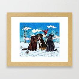 Three Dogs Posing in Winter Framed Art Print