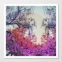 Dibujando un sol en el bosque Canvas Print