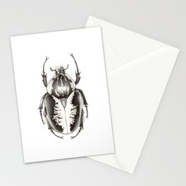 Goliath Beetle Stationery Cards