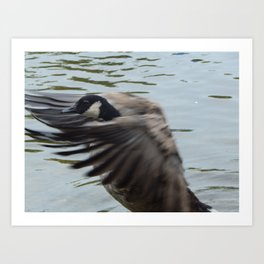 Goose fancy Art Print