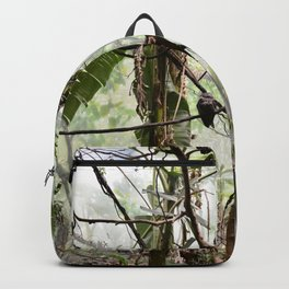 In the Bronx's jungle Backpack