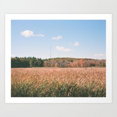 the harvest has ended Art Print