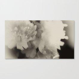 floating in monotones Canvas Print