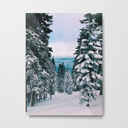 The Lake Beyond The Snow Metal Print