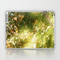 Grass & Sun  Laptop & iPad Skin