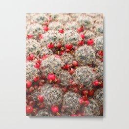 Berry Cactus  Metal Print