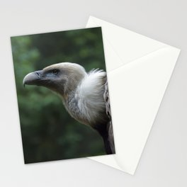 Griffon Vulture Stationery Cards