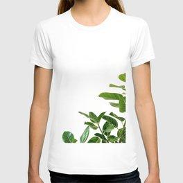 Minimalist Mid Century Abstract Houseplant Green Leaves Fig Tree T-shirt