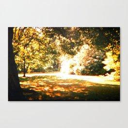 Summer Shades Canvas Print