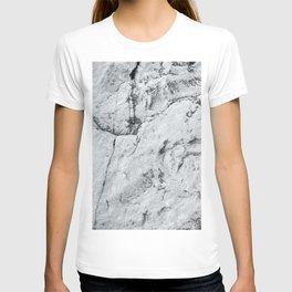 Old Stone Wall VI T-shirt