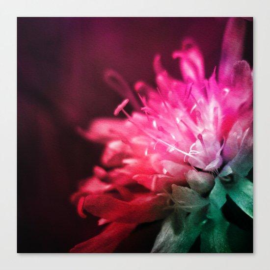 Dream Flower 10 Canvas Print