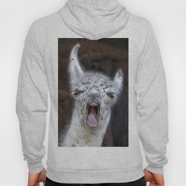 Young Lama with a big mouth | Junges Lama mit grosser Klappe Hoody