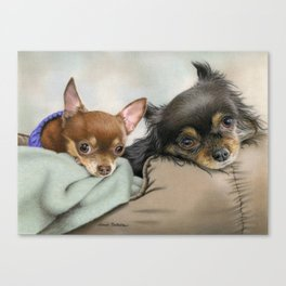 Like Two Chi's In A Pod Canvas Print