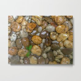 Top View of wet rock backgrounds in the tropical garden in 4:3 Ratio. Metal Print