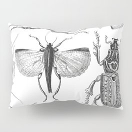 Vintage Beetle black and white drawing Pillow Sham