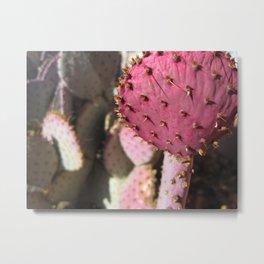 La Luz NM Cactus Metal Print