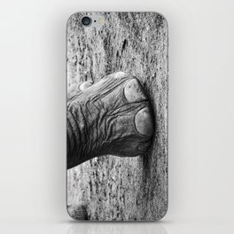 The Elephant Sanctuary 01 iPhone Skin