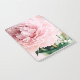 Blush Peonies Notebook