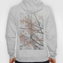 Tree with coral berries and flowers Hoody