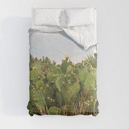 Big Cactus Comforters