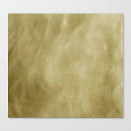 cheveux volant Canvas Print