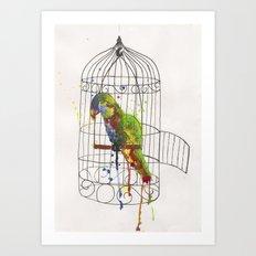 Cockatoo Art Print